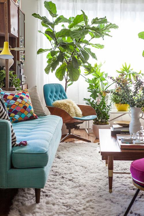 decorar uma apartamento alugado - espalhe as plantas pela sala