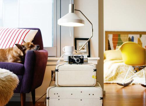 Decorar com amor - exponha suas malas antigas