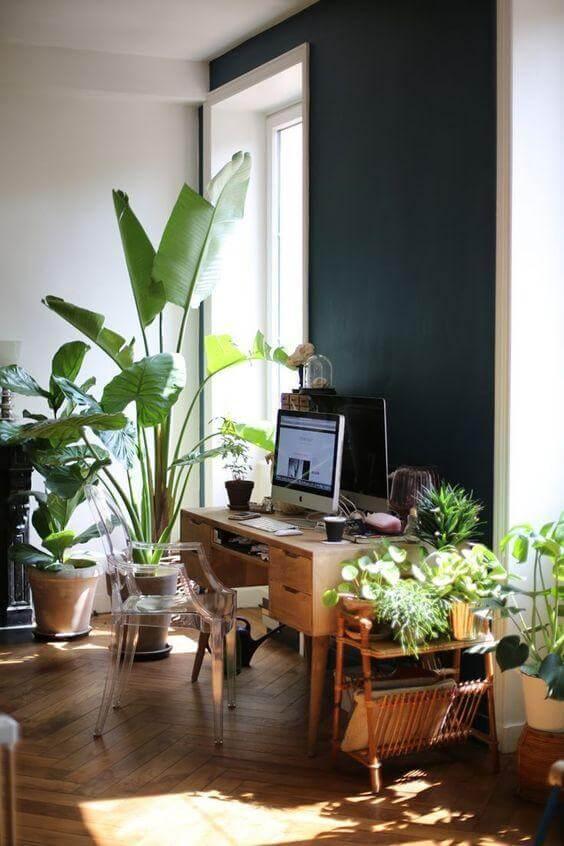 Estilo de decoração tropical com Cadeira Ghost - LIV Decora