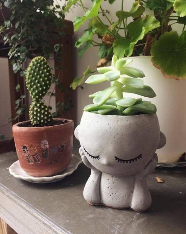 Truques na Decoração - Vaso para planta Paz e Amor - LIV Decora