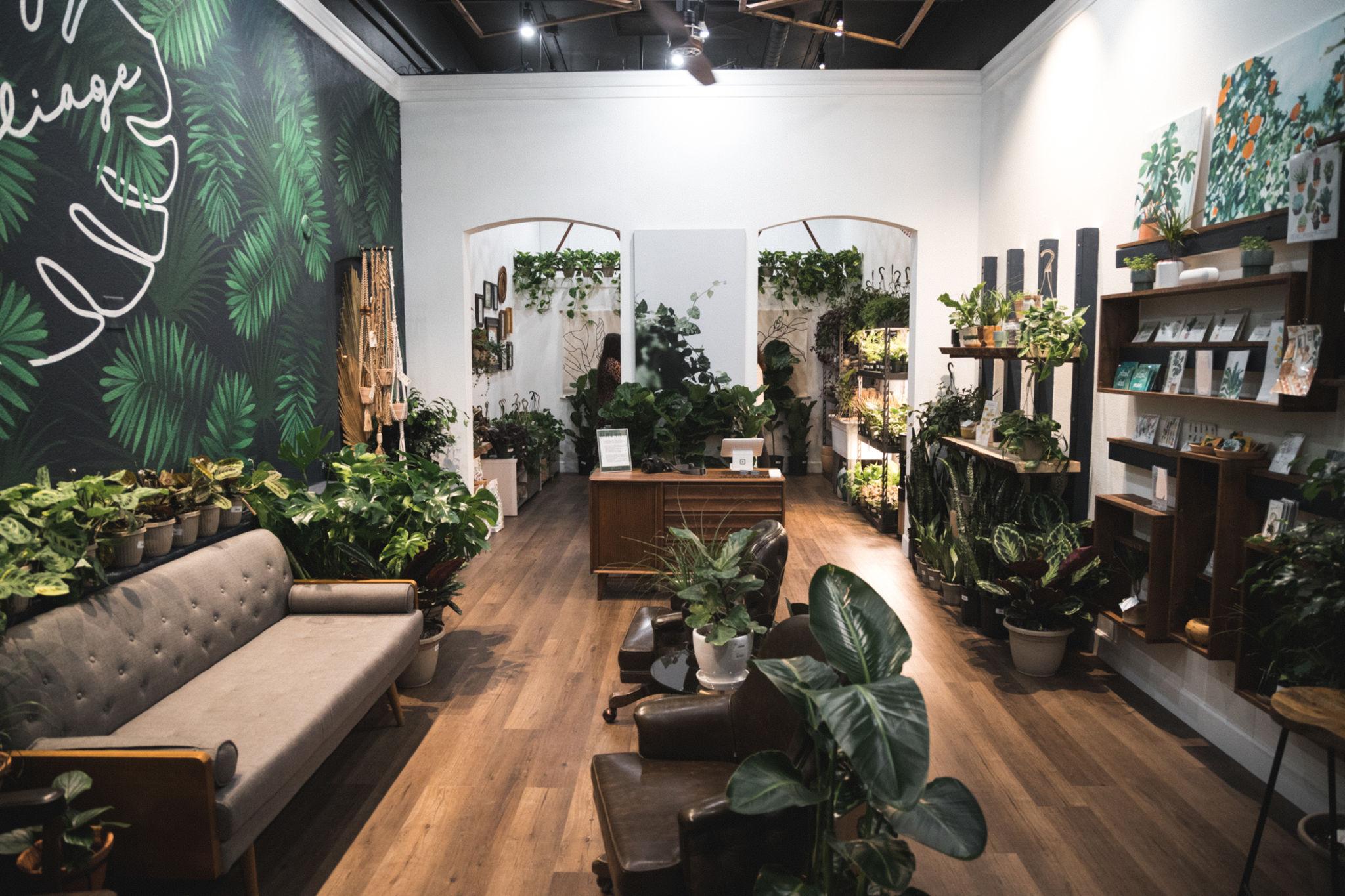 Urban Jungle: conheça o estilo de decoração que chegou para ficar!