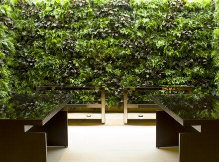 Jardim Vertical: Por que ter um, como fazer e dicas incríveis