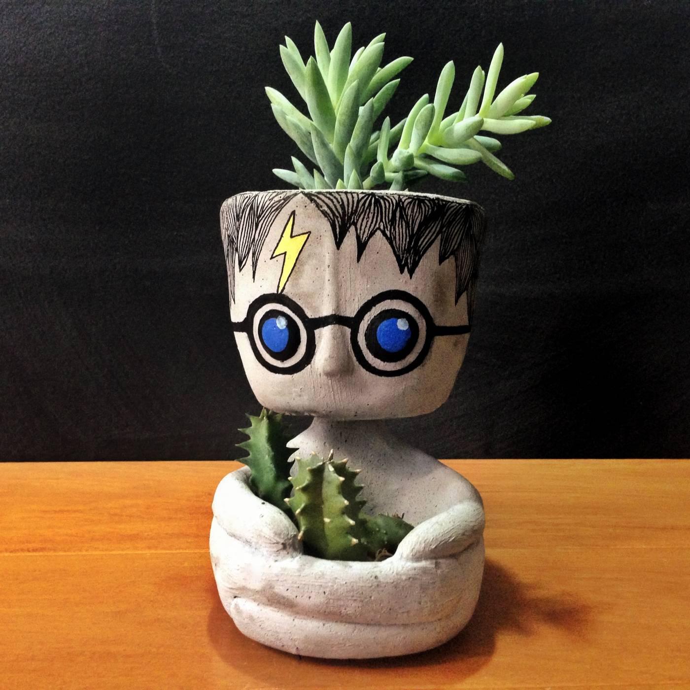 Vaso Decorativo Harry Potter