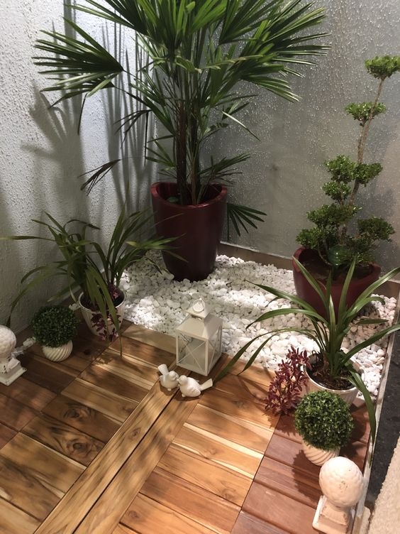 jardim de inverno 9